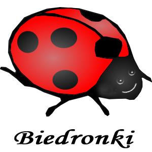 grupaBiedronki